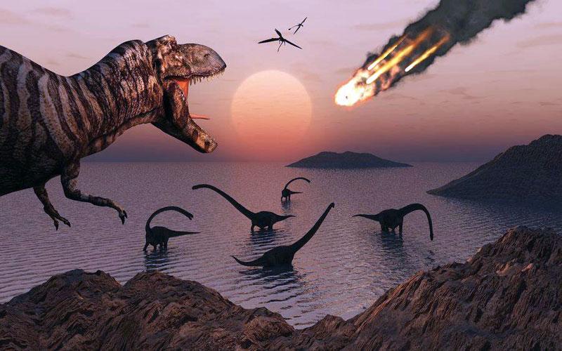 """Résultat de recherche d'images pour """"causes, fin de l'humanité, dinosaures, froid glacial"""""""